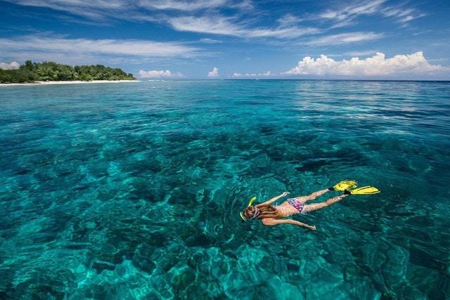 Wisata Bawah Laut Pulau Lombok Yang Mengagumkan