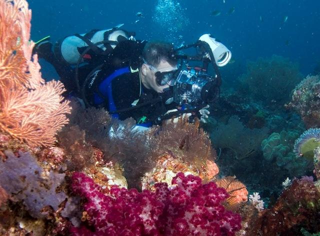 Wisata Raja Ampat: Surga Tersembunyi Di Balik Bumi Papua