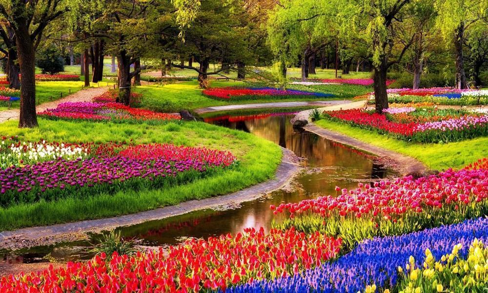 Taman Keukenhof, Destinasi Wisata Terbaik di Belanda
